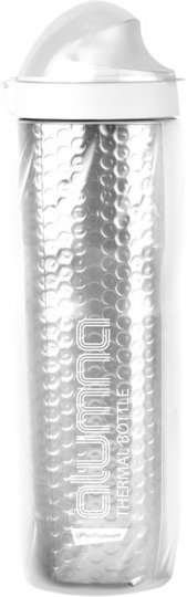 Bidon termiczny 4 h THERMAL ALUMNA 500 ml clear-srebrny